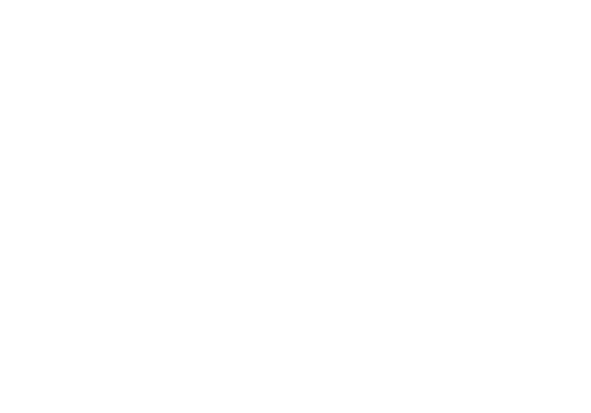 Shane + Lindsay